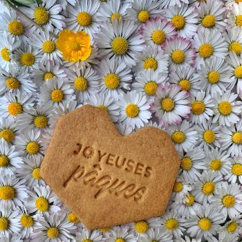 evenement-communion-biscuit-personnalise-remerciement